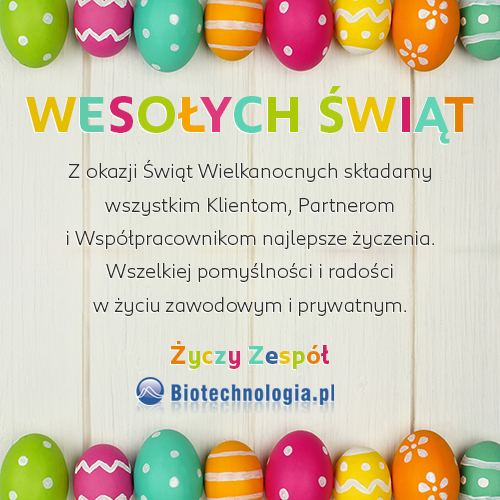 Colorful Easter egg frame against a white wood background